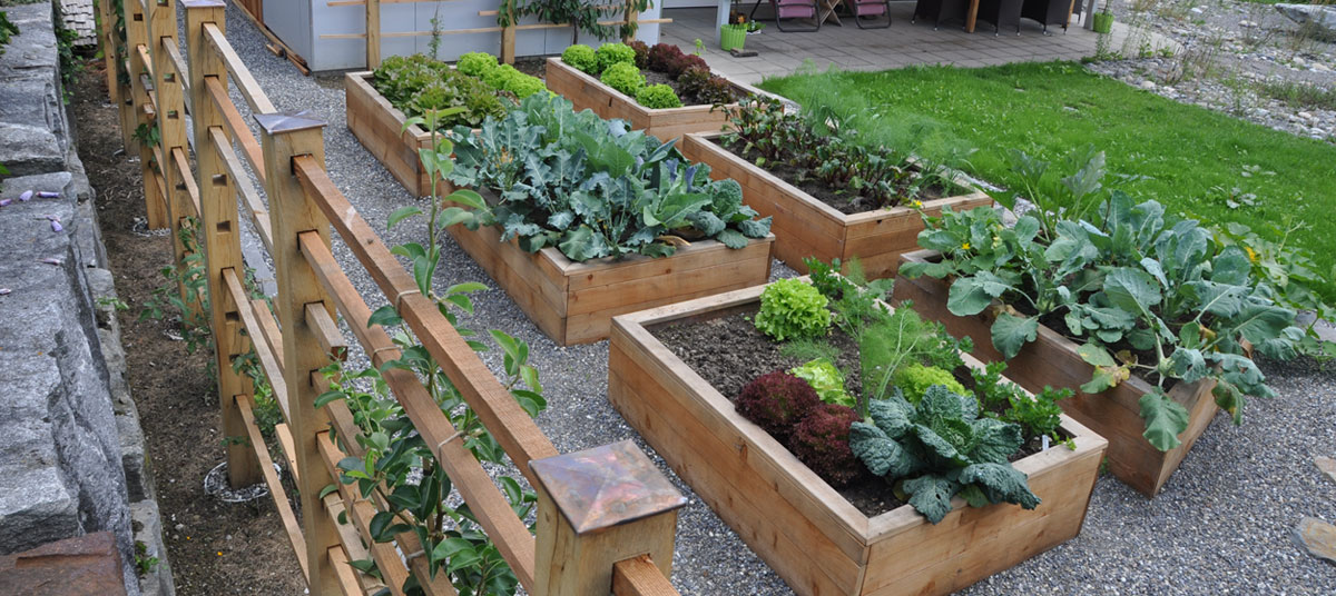 Gartenelemente zum Naschen